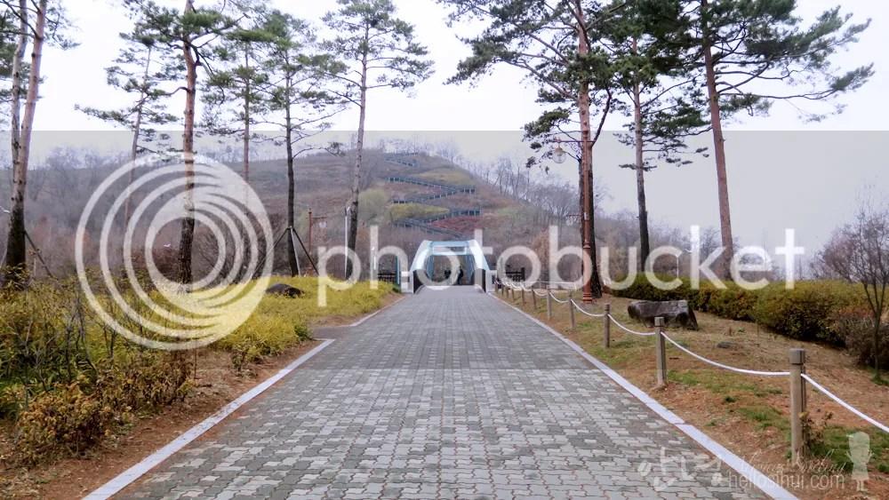 photo IMG_8118 copy_zps1ah8k7cp.jpg