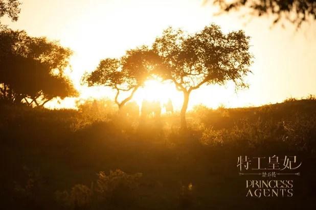 photo Qiao 114.jpg