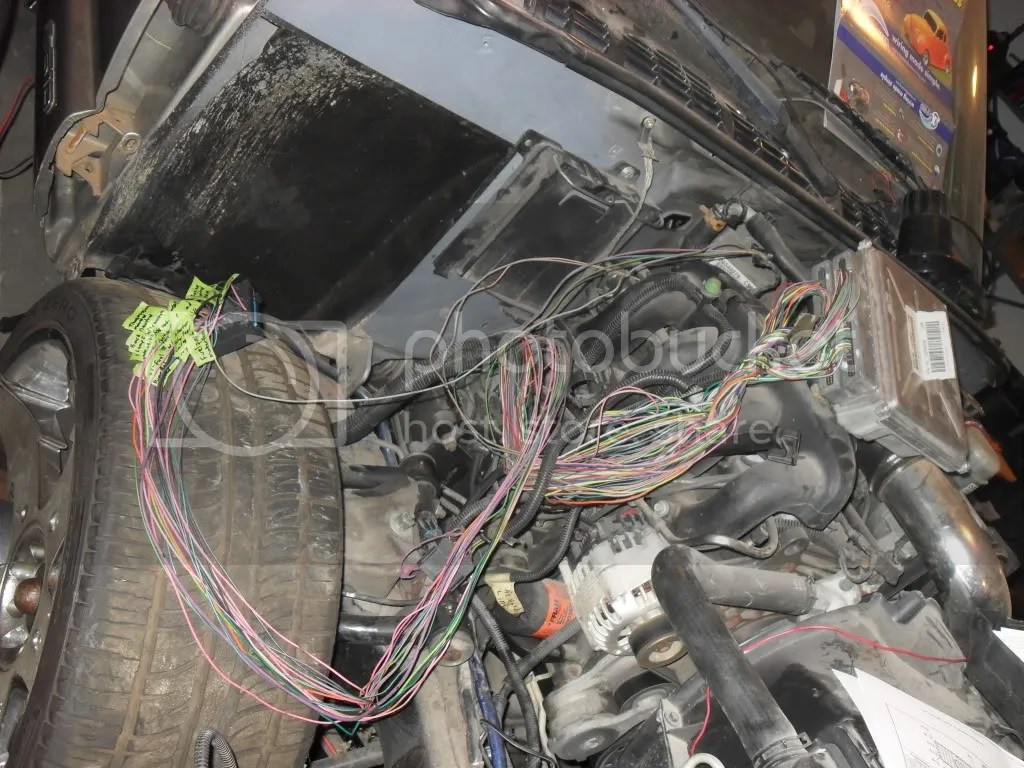 Project S10 Main Wiring Harness