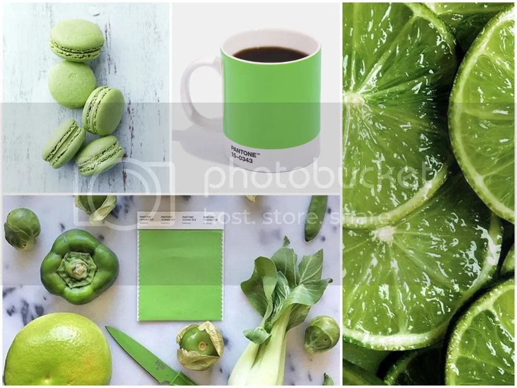 photo Greenery_foods_zpszq9uusyr.jpg
