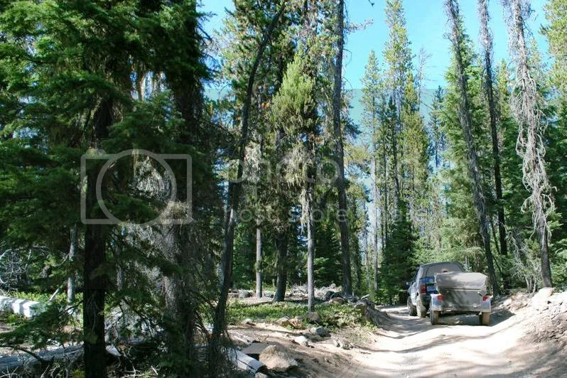 Jeep Trailer Forest Road Oregon Adventure with Compact Camping Trailers and Dinoot Trailers 4WD Trail Little Cultus Lake and Taylor Lake 3