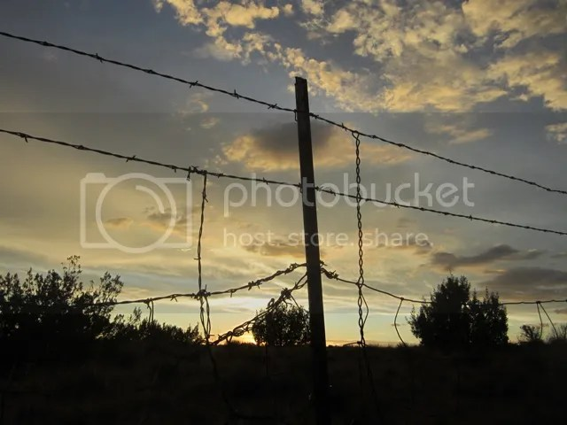 Sunset on the fenceline photo NorAzJuly2012537a_zps8e1abcb5.jpg