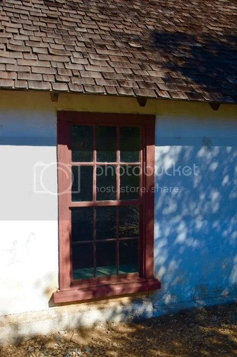 photo DSC_0050201_zps1tfifzml.jpg