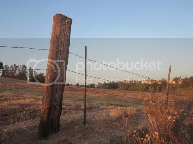 Fence line at dusk photo SoCalJune2013366a_zps786d3fa2.jpg