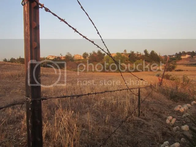 Fence line photo SoCalMay2013473a_zps104a4432.jpg