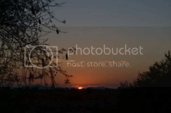 photo SonoranAugsunrise_zps0e0e4a11.jpg