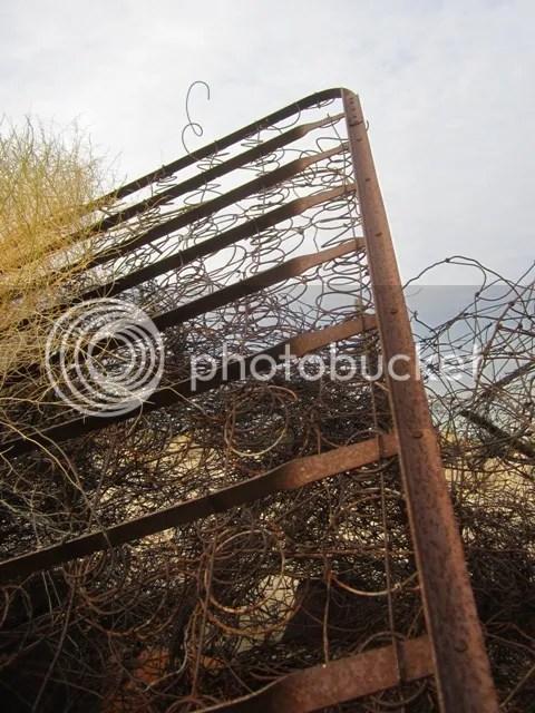 Desert detritus photo SonoranJan20131502a_zps4bf66d6b.jpg