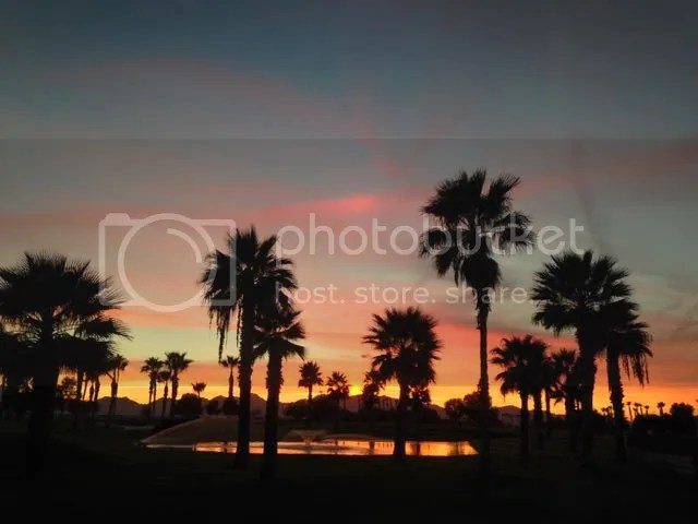 photo Sonorancoyotesundown_zps00be5690.jpg