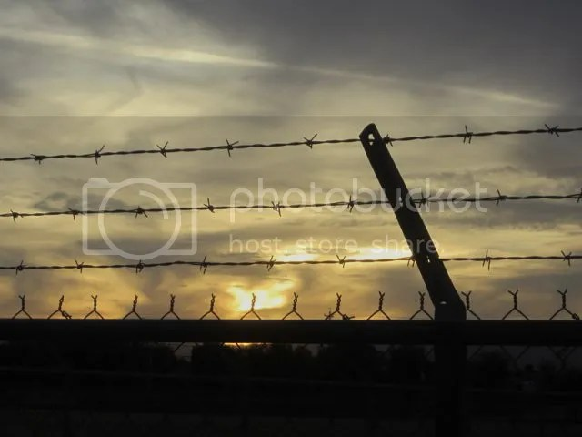 photo Sunsetfence_zps2ddeef37.jpg