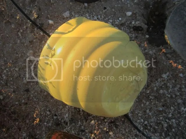 Yellow potsherd photo yellowpotsherd_zps9ee2ab4f.jpg