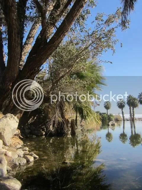 photo oasis_zps851dcfbd.jpg