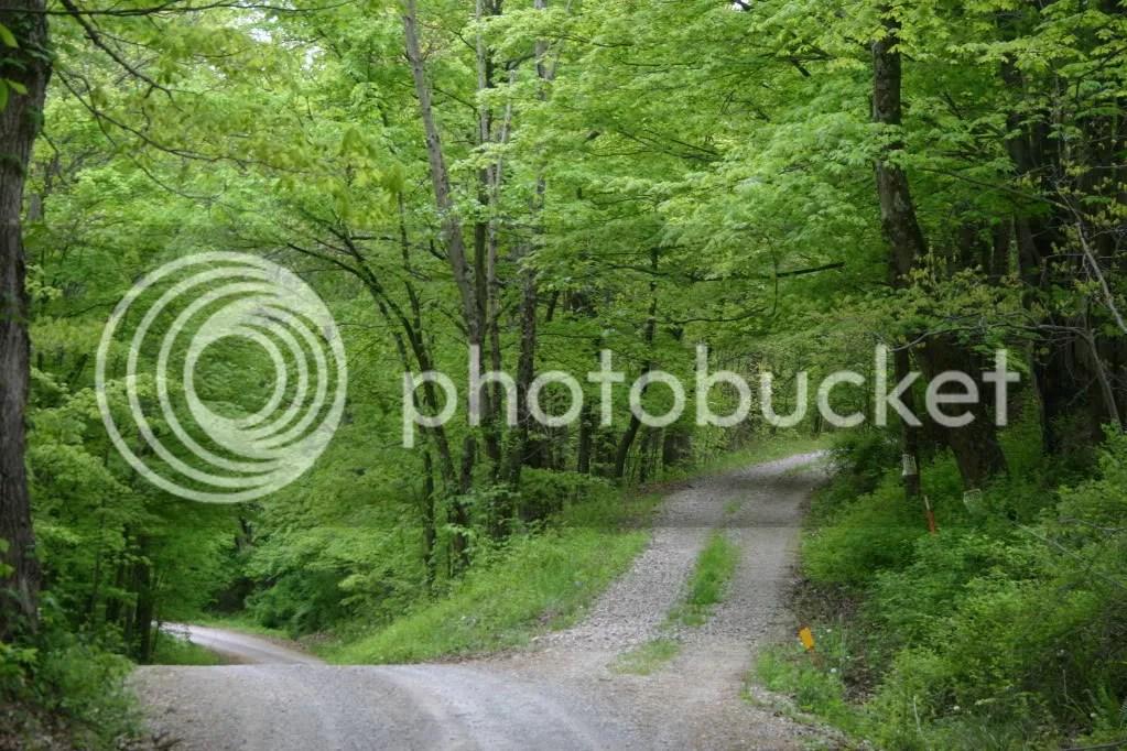 high road photo: High Road Pic048.jpg