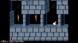 7390f9246ef82f62a35d06509de156fd - Prince of Persia (1989) Switch NSP homebrew