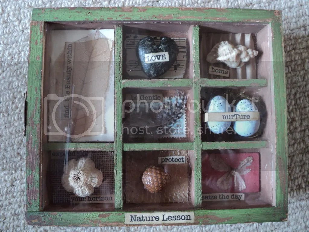 Nature Themed Shadow Box