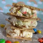M&M Ice Cream Sandwich