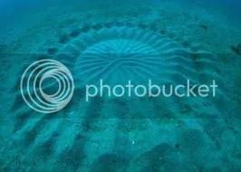 Furcsa homokpadok a tenger fenekén