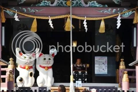 Inter Japán Magazin: Integető macskák