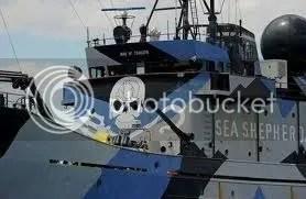 A bálnavédők ellen fegyverkeznek a japán bálnavadászok