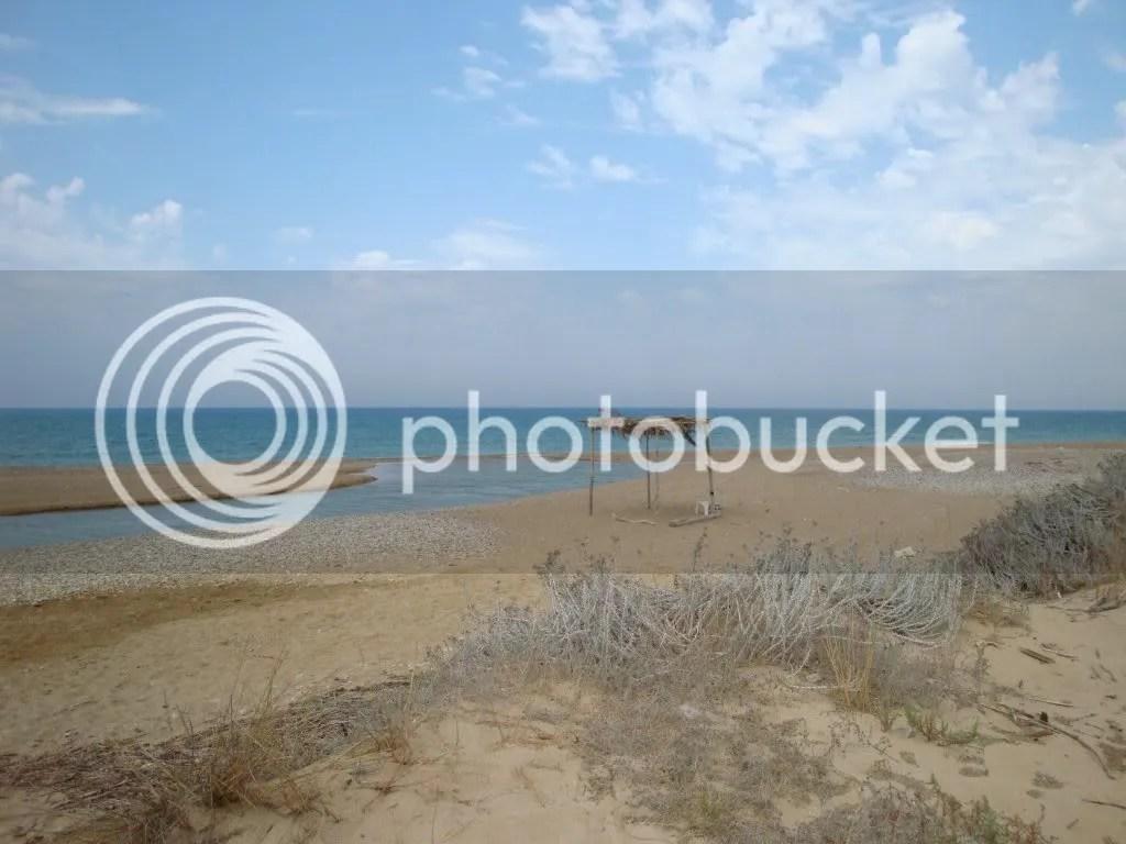 CODICE: A-18. TITOLO: La natura incantata tra fiume e mare