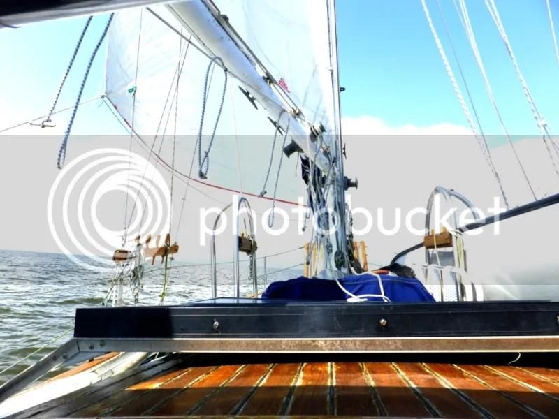 birthday on Cinco de Mayo Sailing