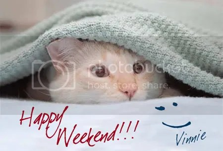 https://i2.wp.com/i113.photobucket.com/albums/n214/vserrano_01/happy-weekend-cat.jpg