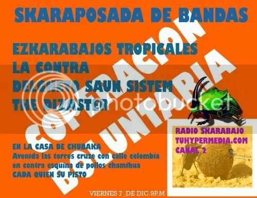 Flyer Skarabajos Tropikales