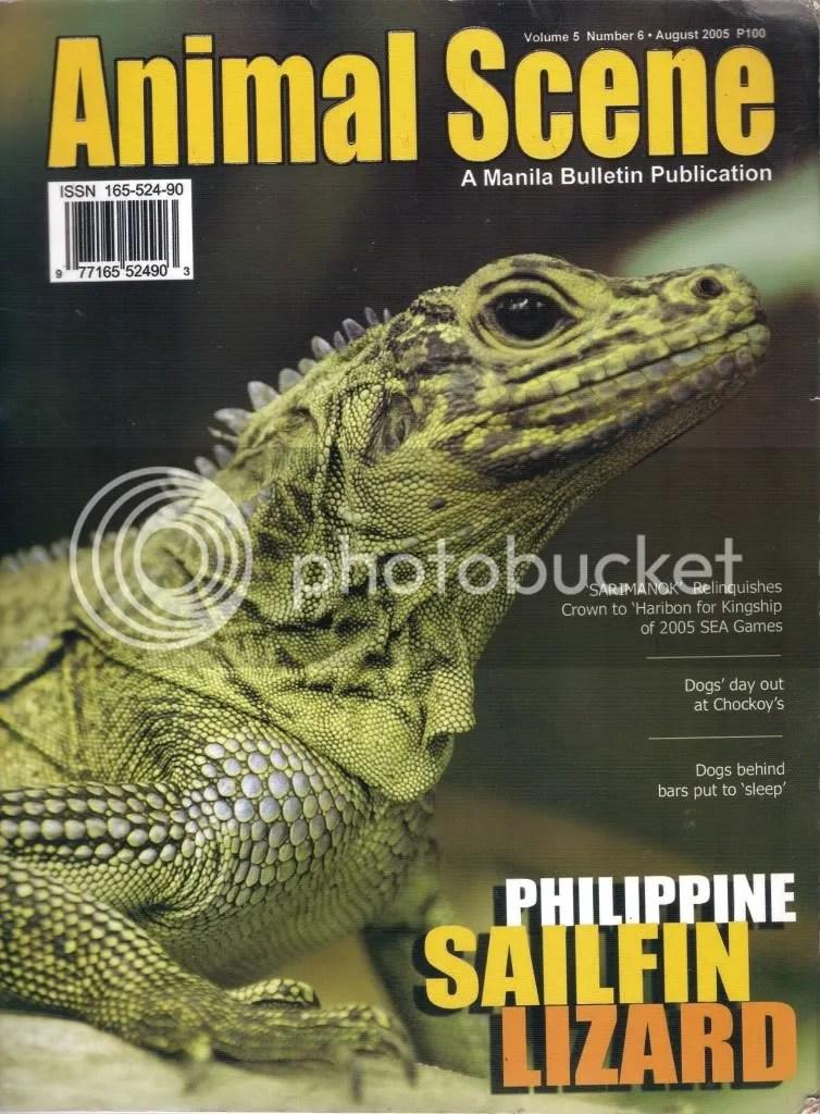 Animal Scene (August 2005)
