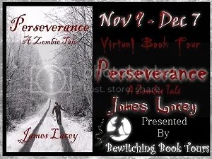 Perseverance Virtual Book Tour with Bewitching Tours