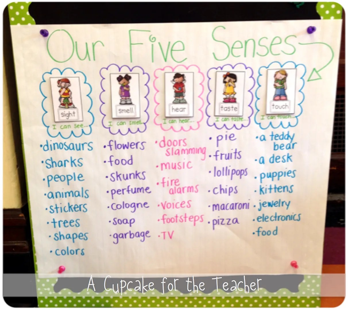 Five Senses Fun