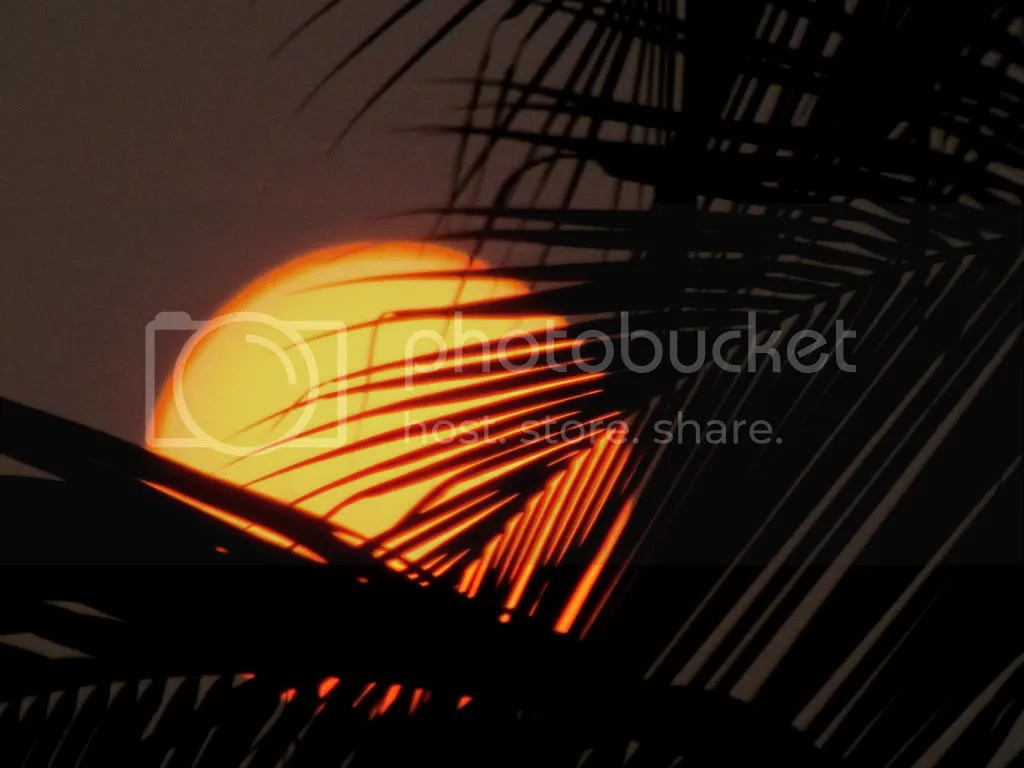 L sunset bg 041211