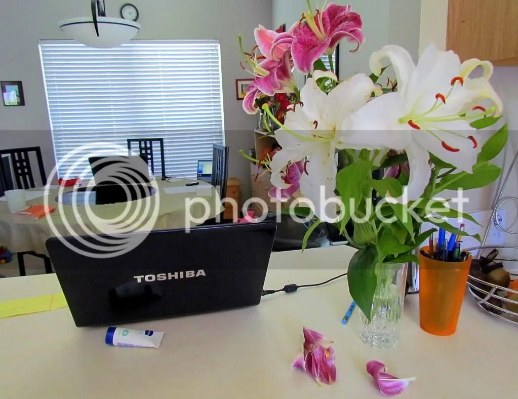 lilies 210711 stl
