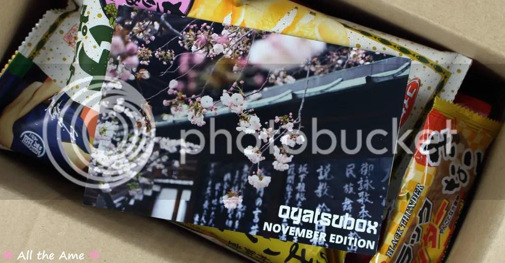photo OyatsuBox November 2016 Review_zpsyfryv0bm.jpg