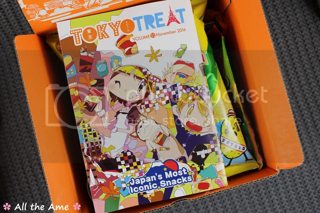 photo TokyoTreat November 2016 Review_zpsx3l6cx6u.jpg