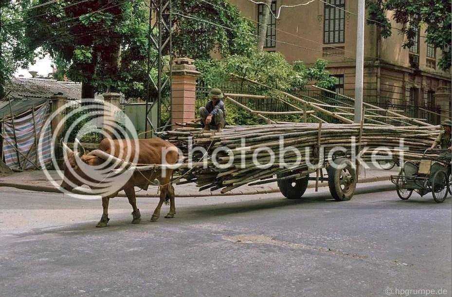 Hà Nội: Giao thông vận tải tre