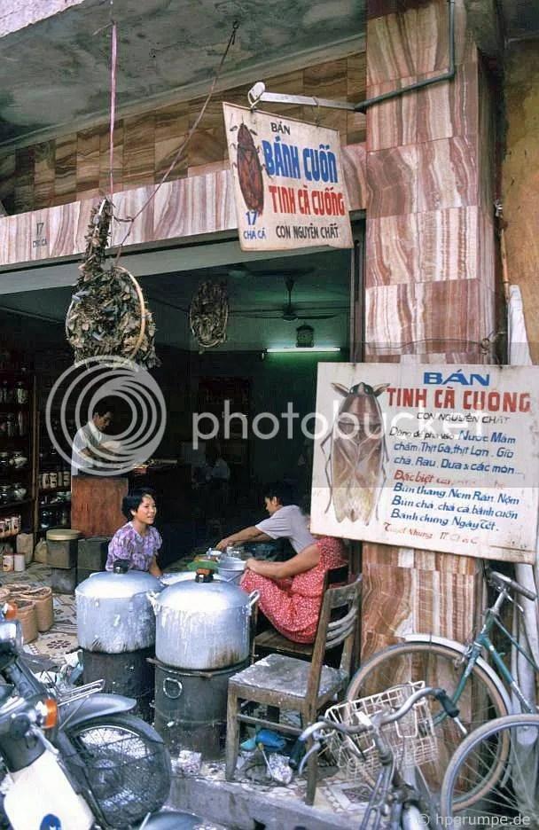 Hà Nội-Altstadt: Đại lý với bọ nước khổng lồ