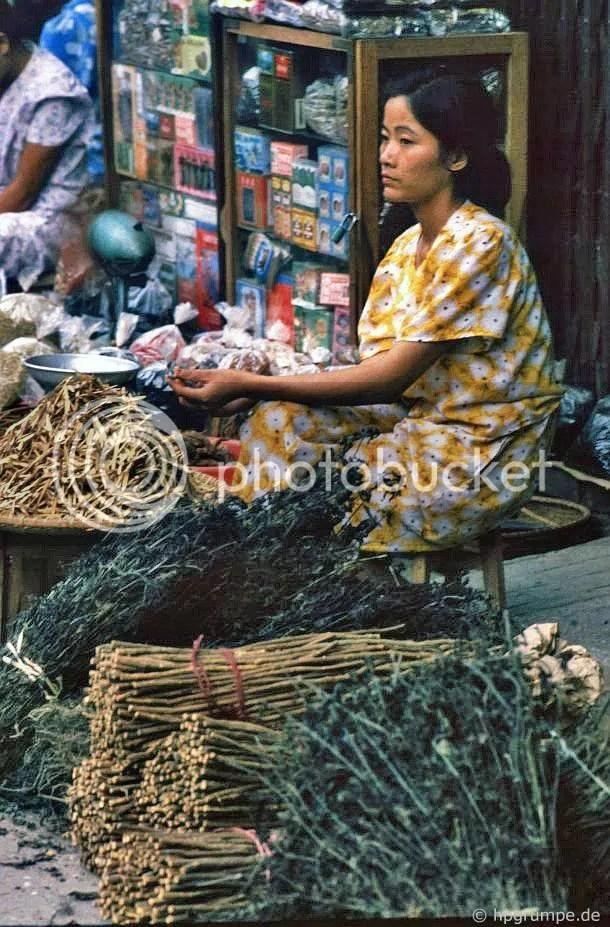 y học cổ truyền Đại lý: Hà Nội-Altstadt