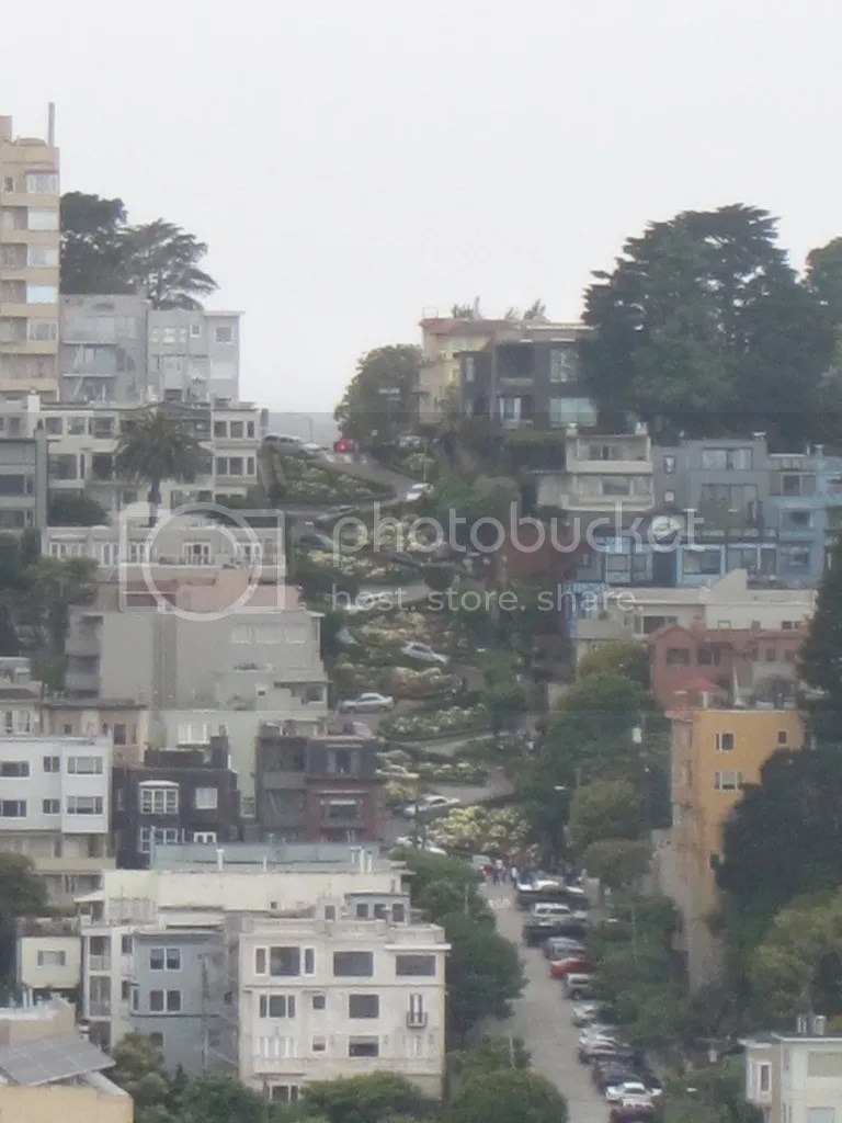 View of Lombard St. from Coit Tower