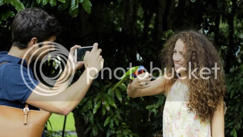 photo Royal_Botanic_Garden_Sydney_zps0wdta4ei.jpg