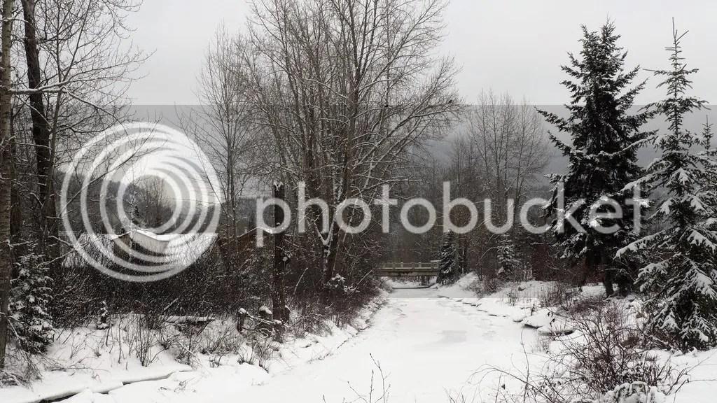 photo Canadian_Rockies_2_zpszxkseosh.jpg