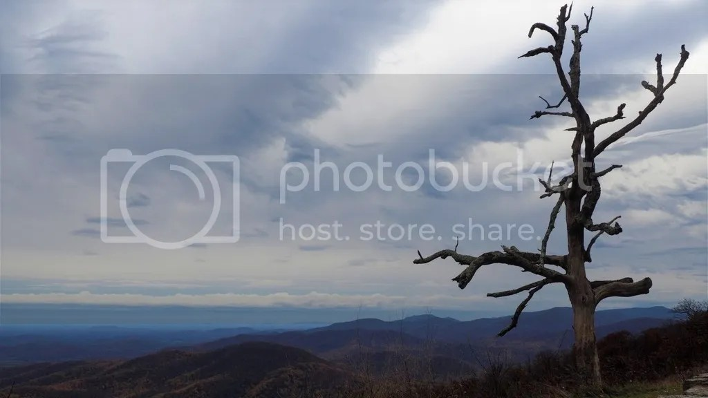 photo Skyline_Drive_Shenandoah_National_Park_2_zpsy27r3o03.jpg