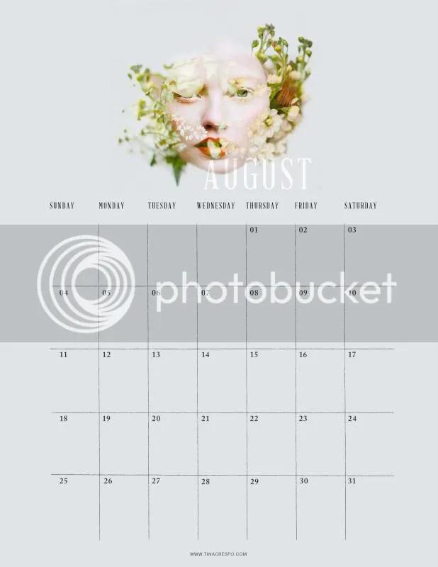 2013 November Printable Calendar Cats Month