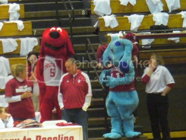 Apparently, Blues Clues and Clifford are big Hoosiers fans. Who knew?