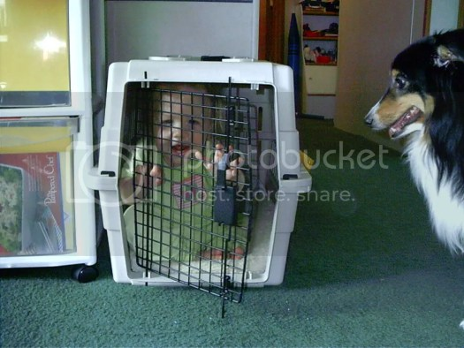 Aly in a dog crate