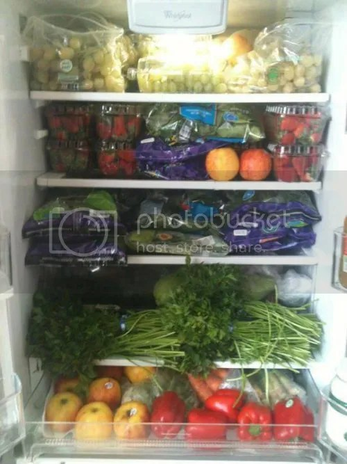 Veggie Fridge