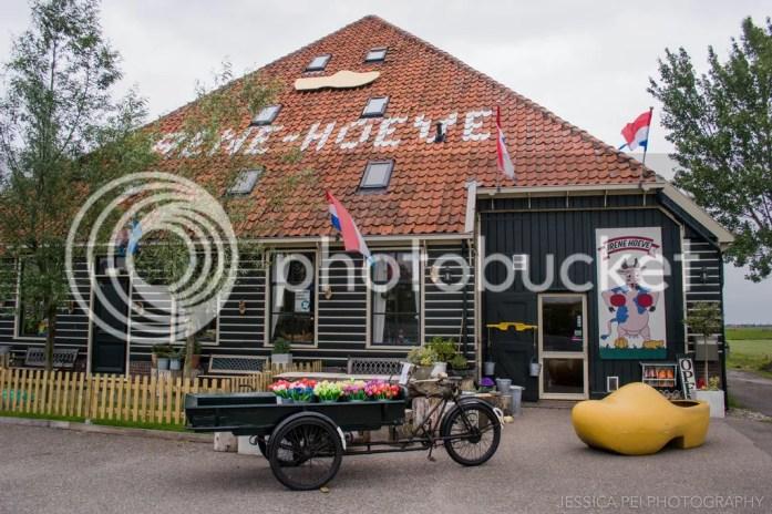 Irene Hoeve clog cheese dutch