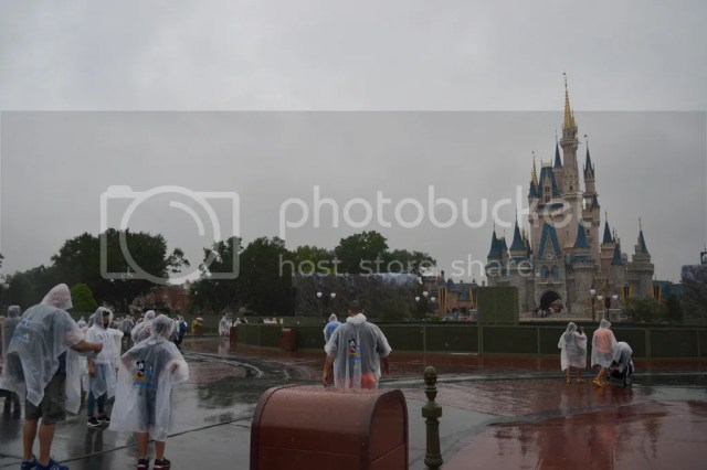 photo 9_zpsqonqf44m.jpg