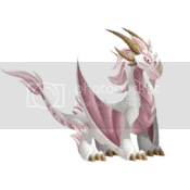 Albino Dragon Information
