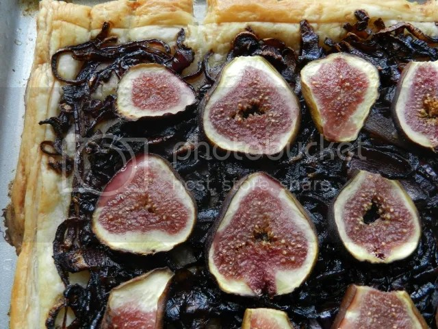 Fig & Onion Tart photo DSCN0883_zps51a35a2e.jpg