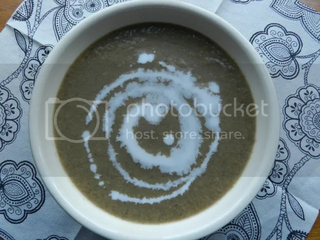 Cream of mushroom soup photo DSCN0957_zps9d040773.jpg