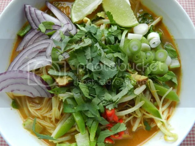 Rice noodles in curry coconut broth photo DSCN1129_zpsb1f631f2.jpg